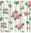 pattern with beautiful roses vector image vector image