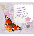 card with a butterfly vector image vector image