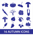 Autumn icons eps10 vector image