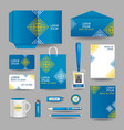 Blue ornamental business stationery template vector image