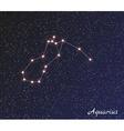 constellation aquarius vector image