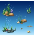 Kit of the underwater world with shell seaweed vector image