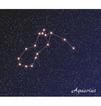 constellation aquarius vector image