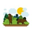 Isolated bear animal design vector image