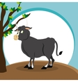 bull icon design  graphic  animal vector image