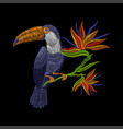 embroidery toucan with tropical flowers vector image