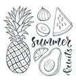 pineapple and sliced fruits food vector image