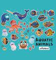 decorative aquatic animals and fishes set vector image
