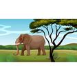 A huge elephant vector image vector image