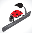 Lady bug graphic vector image