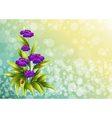 A plant with violet flowers vector image