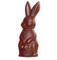 chocolate easter bunny on white 3d vector image