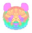 panda2 head polygon isolated vector image