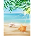 Summer vacation poster template vector image