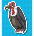 Vulture looking angry on blue background vector image