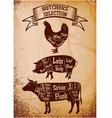 butchers selection vector image