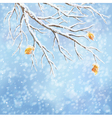 Winter snow-covered frost branch background vector image