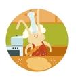 Rabbit Cooker vector image vector image