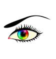eye with colorful iris vector image