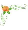 Corner floral ornament vector image