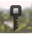 key icon on blurred background vector image