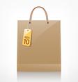 Bag brown shopping vector image