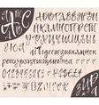 Calligraphic cyrillic big alphabetical set vector image