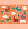 decorative llama alpaca set colorful vector image