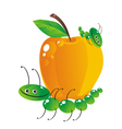 food catepillar vector image