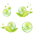 Green Designs With Baubles vector image vector image