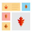 flat icon foliage set of aspen foliage alder and vector image