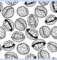 Walnut seamless pattern food vector image
