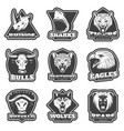 vintage team sport logos set vector image vector image