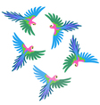 Macaw parrot flock pattern vector image