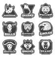 vintage team sport logos set vector image