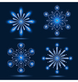 Set of four snowflakes vector image