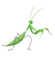 mantis in an attacking pose vector image