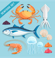 seafood set crab squid tuna shrimp jellyfish vector image vector image