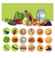 healthy food lifestyle image vector image