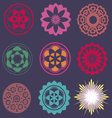 collection of esoteric flower elements vector image