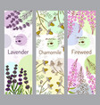 herbal tea collection fireweed lavender vector image