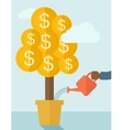 Human hand watering the money tree vector image
