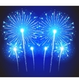 Beautiful Fireworks vector image