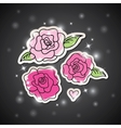 pink roses on black vector image