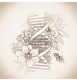 Graphic DNA structure vector image