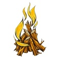 Flame fire of campfire with vector image
