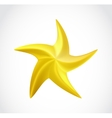 gold swirl star isolated vector image