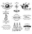 Hand Drawn Olive Oil Emblem Set vector image
