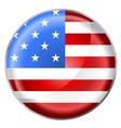 USA flag button vector image