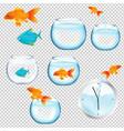 fish and aquariums set vector image